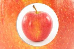 Φρούτα της Apple στο υπόβαθρο φλούδας μήλων Στοκ Εικόνες