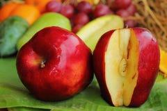 Φρούτα της Apple. Στοκ Φωτογραφίες