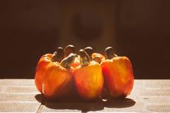 Φρούτα των δυτικών ανακαρδίων σε μια δέσμη στοκ εικόνα με δικαίωμα ελεύθερης χρήσης