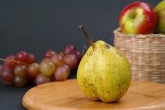 Φρούτα φθινοπώρου Στοκ Φωτογραφίες