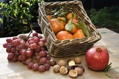 Φρούτα φθινοπώρου Στοκ φωτογραφίες με δικαίωμα ελεύθερης χρήσης