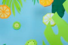 Φρούτα φιαγμένα από έγγραφο r tropics στοκ εικόνες