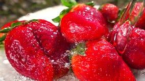 Φρούτα φραουλών πλύσης σε αργή κίνηση απόθεμα βίντεο