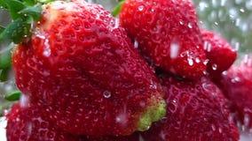 φρούτα φραουλών σε αργή κίνηση απόθεμα βίντεο