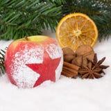 Φρούτα χειμερινών μήλων στα Χριστούγεννα με το χιόνι και το αστέρι Στοκ Φωτογραφίες
