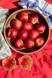 Φρούτα χυμού Στοκ Εικόνα