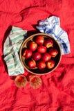 Φρούτα χυμού Στοκ εικόνες με δικαίωμα ελεύθερης χρήσης