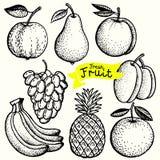 Φρούτα απεικόνιση αποθεμάτων