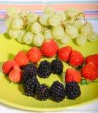 Φρούτα 13 Στοκ Εικόνα