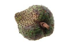 φρούτα annona που απομονώνονται Στοκ Εικόνες