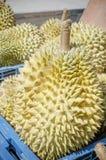 Φρούτα Durian του καλοκαιριού Στοκ εικόνα με δικαίωμα ελεύθερης χρήσης