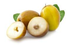 Φρούτα mauritiana Ziziphus Στοκ Εικόνες