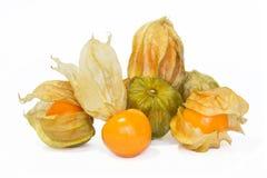 Φρούτα Physalis. Στοκ Εικόνα