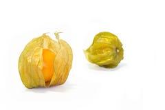 Φρούτα Physalis. Στοκ φωτογραφία με δικαίωμα ελεύθερης χρήσης