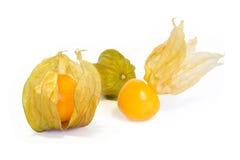 Φρούτα Physalis. Στοκ Φωτογραφίες