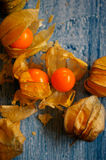 Φρούτα Physalis Στοκ φωτογραφία με δικαίωμα ελεύθερης χρήσης