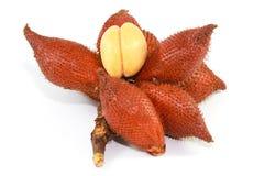 Φρούτα Salacca στο άσπρο υπόβαθρο Στοκ Εικόνες