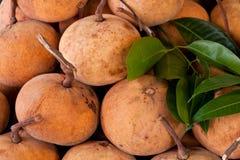 Φρούτα Santol Στοκ Εικόνες