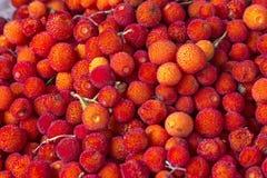 Φρούτα unedo Arbutus σε μια αγορά στο Μαρόκο Στοκ Φωτογραφία