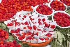 Φρούτα unedo Arbutus σε μια αγορά στο Μαρόκο Στοκ εικόνες με δικαίωμα ελεύθερης χρήσης