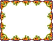 Φρούτο-πλαίσιο στοκ φωτογραφία