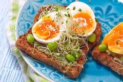 Φρυγανιά αβοκάντο και αυγών στοκ φωτογραφίες