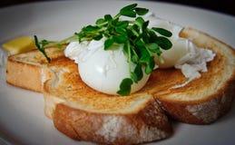 φρυγανιά αυγών Στοκ εικόνες με δικαίωμα ελεύθερης χρήσης
