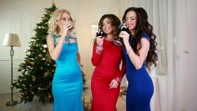 Φρυγανιά, ευθυμίες του νέου έτους μια ομάδα κοριτσιών κοντά στο χριστουγεννιάτικο δέντρο, οινόπνευμα ποτών από των γυαλιών κρασιο απόθεμα βίντεο