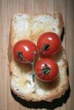 Φρυγανιά με την ντομάτα και τα χορτάρια Στοκ Φωτογραφία