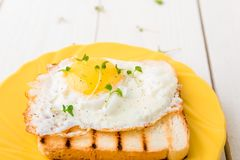 Φρυγανιά με το αυγό στο κίτρινο πιάτο με την μικροϋπολογιστής-πρασινάδα στοκ εικόνα με δικαίωμα ελεύθερης χρήσης