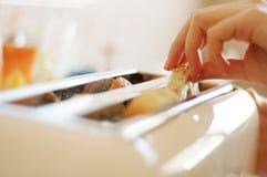 φρυγανιέρα 2 κουζινών Στοκ φωτογραφίες με δικαίωμα ελεύθερης χρήσης