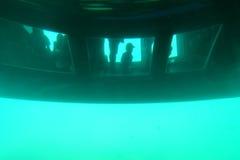 Φταμένο γυαλί καταμαράν κάτω από το νερό στοκ εικόνες