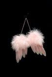 φτερά αγάπης Στοκ εικόνα με δικαίωμα ελεύθερης χρήσης