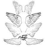 φτερά αγγέλου, εγγραφή, που σύρουν το διάνυσμα ελεύθερη απεικόνιση δικαιώματος