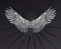 φτερά αστεριών Στοκ εικόνα με δικαίωμα ελεύθερης χρήσης
