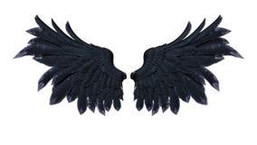 Φτερά δαιμόνων, μαύρο φτέρωμα φτερών στο άσπρο υπόβαθρο Στοκ εικόνες με δικαίωμα ελεύθερης χρήσης