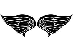 φτερά δερματοστιξιών αετώ&n Στοκ φωτογραφία με δικαίωμα ελεύθερης χρήσης