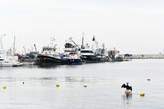Φτερά κορμοράνων, υπόβαθρο αλιευτικών σκαφών στοκ φωτογραφία