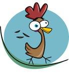 φτερά κοτόπουλου Στοκ Εικόνες
