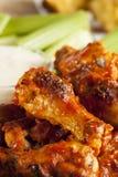 Φτερά κοτόπουλου καυτών και Buffalo Spicey Στοκ Εικόνες