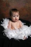 φτερά μωρών που τυλίγοντα&iot Στοκ εικόνες με δικαίωμα ελεύθερης χρήσης