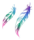 Φτερά ουράνιων τόξων Στοκ Φωτογραφίες