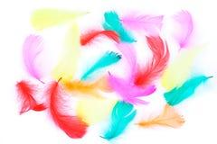φτερά Πάσχας ανασκόπησης Στοκ Φωτογραφία