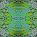 Φτερά περιστεριών Nicobar Στοκ εικόνες με δικαίωμα ελεύθερης χρήσης