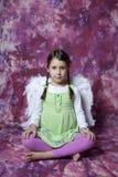 φτερά πορτρέτου κοριτσιών Στοκ Εικόνα
