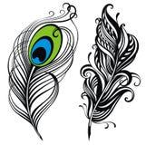 φτερά απεικόνιση αποθεμάτων