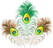 Φτερά Peacock στο άσπρο υπόβαθρο Στοκ Φωτογραφίες