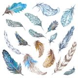 Φτερά Watercolor καθορισμένα Στοκ Εικόνα
