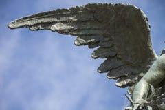 Φτερό αγγέλου Στοκ Εικόνα