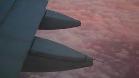 Φτερό αεροσκαφών κινηματογραφήσεων σε πρώτο πλάνο που πετά πέρα από τον τάπητα των ρόδινων σύννεφων απόθεμα βίντεο